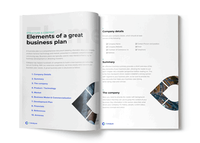 Business Plan Guide Catalyze